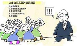 机场安检职员辞职报告范文格式
